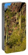 Sonoran Desert West Saguaro National Park Portable Battery Charger