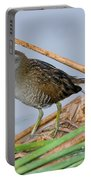 Sora Rail Portable Battery Charger