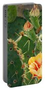 South Texas Prickly Pear Portable Battery Charger