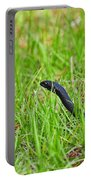 Southern Black Racer Portable Battery Charger by Al Powell Photography USA