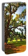 Southern Comfort Painted Portable Battery Charger by Steve Harrington