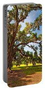 Southern Comfort Portable Battery Charger
