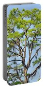 Southern Cypress Portable Battery Charger