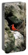 Southern Red Bird By The Flint River Portable Battery Charger