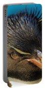 Southern Rock Hopper Penguin Portable Battery Charger