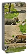 Southern White Rhinoceros In San Diego Zoo Safari Park In Escondido-california Portable Battery Charger