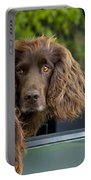 Spaniels In Car Portable Battery Charger