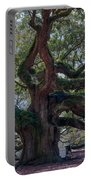 Spanish Moss Draped Limbs Portable Battery Charger
