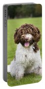 Spanish Water Dog Portable Battery Charger