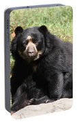 Speckled Bear Portable Battery Charger