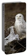 Spectacular Owl Portable Battery Charger