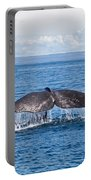 Sperm Whale Tail  Physeter Catodon Portable Battery Charger