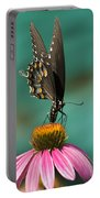 Spicebush Swallowtail Butterfly - Papilio Troilus Portable Battery Charger