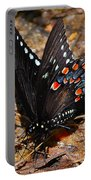 Spicebush Swallowtail Butterfly Preflight Portable Battery Charger