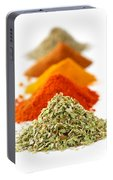 Spices Portable Battery Charger