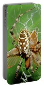 Spider Eating Moth Portable Battery Charger