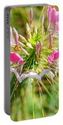 Spider Flower Portable Battery Charger