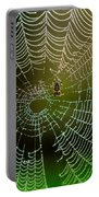 Spider In Web 3 Portable Battery Charger