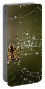 Spider In Web 5 Portable Battery Charger