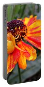 Spider On Helenium Portable Battery Charger