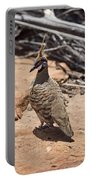 Spinifex Pigeon V3 Portable Battery Charger