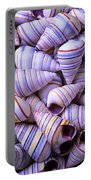 Spiral Sea Shells Portable Battery Charger