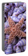 Spiral Shells And Starfish Portable Battery Charger