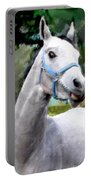 Spirited Grey Horse Portable Battery Charger