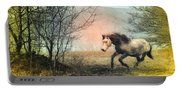 Spiritus Equus Portable Battery Charger