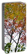 Splash Of Autumn Colors Portable Battery Charger