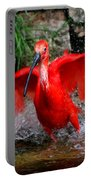 Splish Splash - Red Ibis Portable Battery Charger