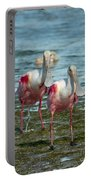 Spoonbills At The Shore Portable Battery Charger