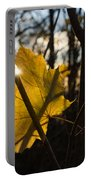 Spotlight On Autumn Portable Battery Charger