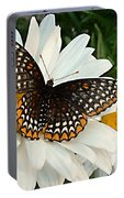 Spotted Butterfly Portable Battery Charger