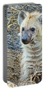Spotted Hyena Pup In Kruger National Park-south Africa  Portable Battery Charger