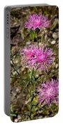 Spotted Knapweed Portable Battery Charger