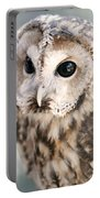 Spotted Owl Portable Battery Charger