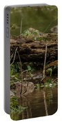 Spotted Sandpiper 2 Portable Battery Charger
