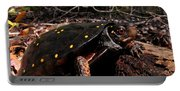 Spotted Turtle Portable Battery Charger