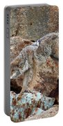 Spotting Prey Portable Battery Charger