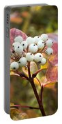 Sprig Of Pearls Portable Battery Charger