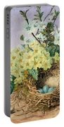 Spring, 1879 Portable Battery Charger