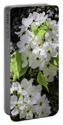Spring Apple Blossoms Portable Battery Charger