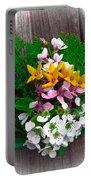 Spring Arrangement Portable Battery Charger