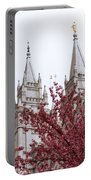 Spring At The Temple Portable Battery Charger