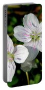 Spring Beauty Wildflowers - Claytonia Virginica Portable Battery Charger