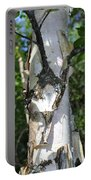 Spring Birch Portable Battery Charger
