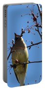 Spring Bird Singing Portable Battery Charger