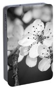 Spring Blooms 6690 Portable Battery Charger