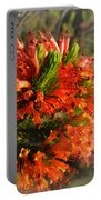 Spring Blossom 11 Portable Battery Charger